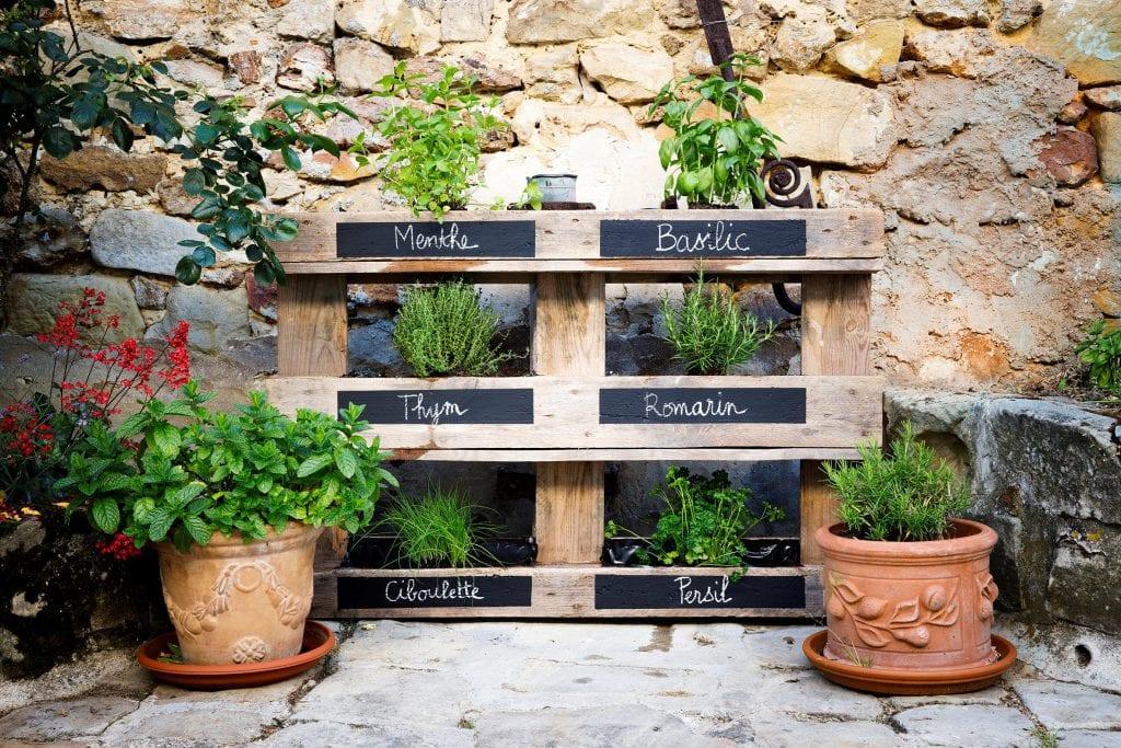 Cr er son jardin vertical d herbes aromatiques atlas for men - Creer son jardin ...