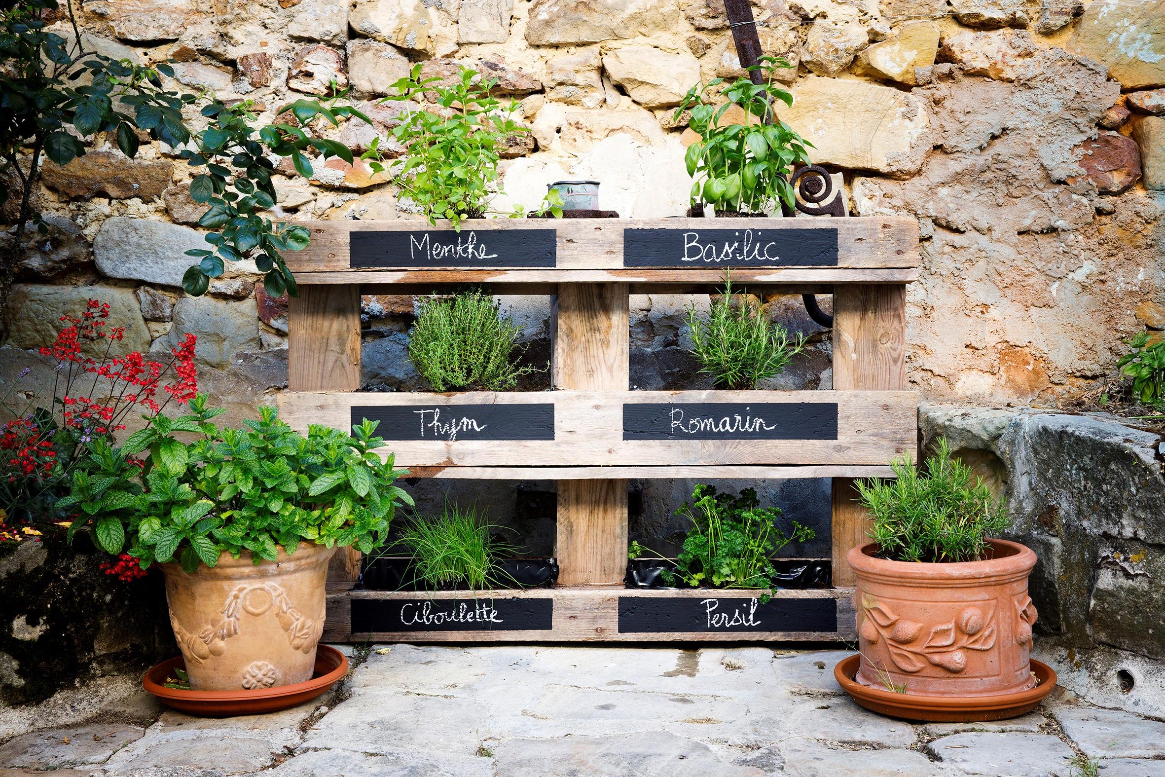 Plantes Aromatiques En Jardinière créer son jardin vertical d'herbes aromatiques | atlas for men