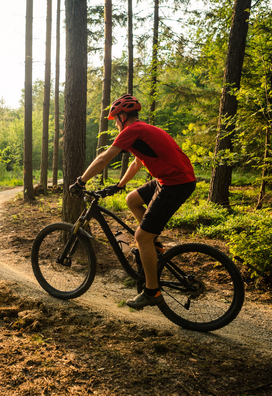 Positionnement idéal à vélo