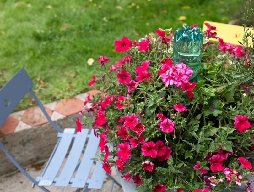arrosage plante exterieur